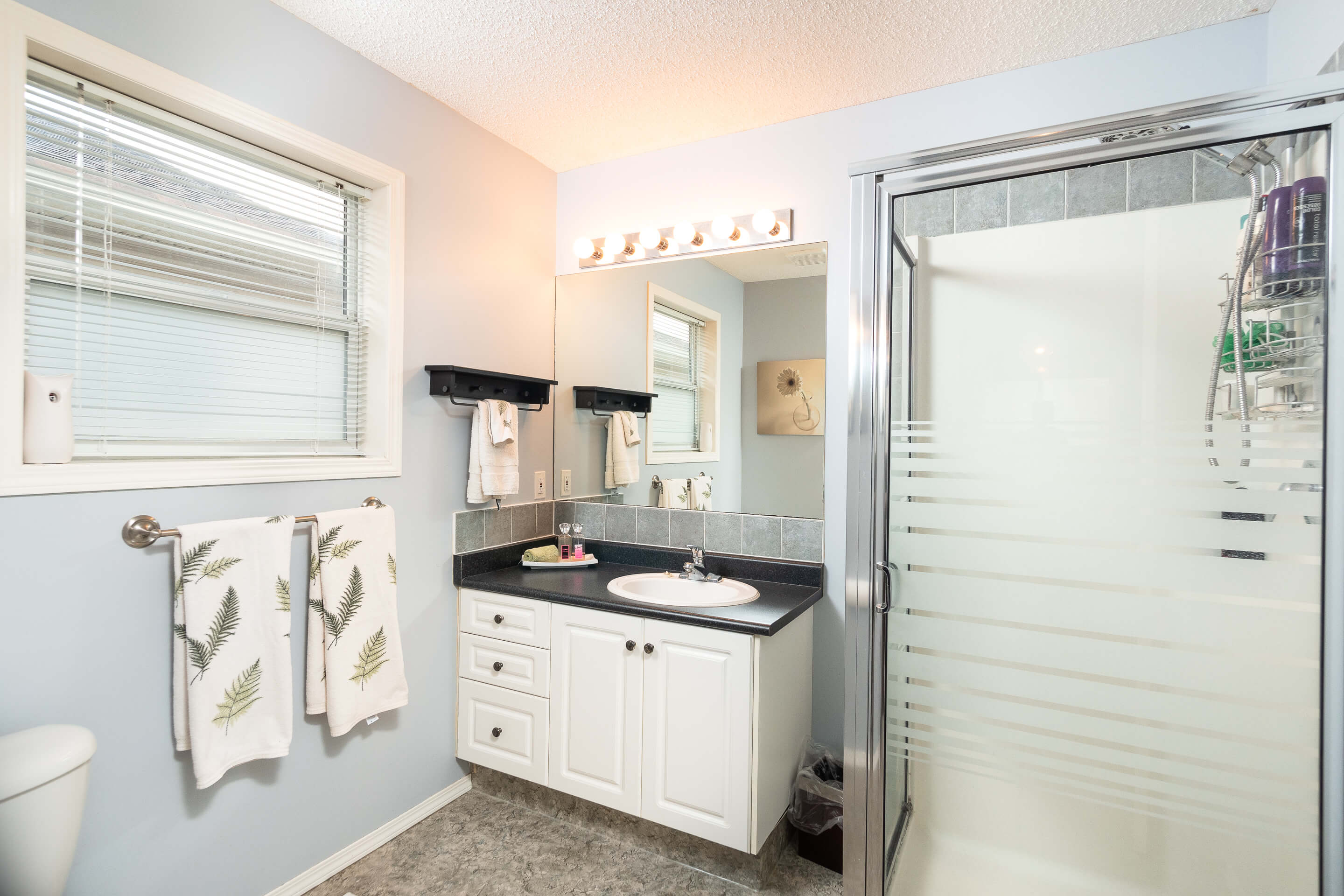Hello Gorgeous - 225 Stonegate Crescent NW Airdrie - Tara Molina Real Estate (25 of 37)