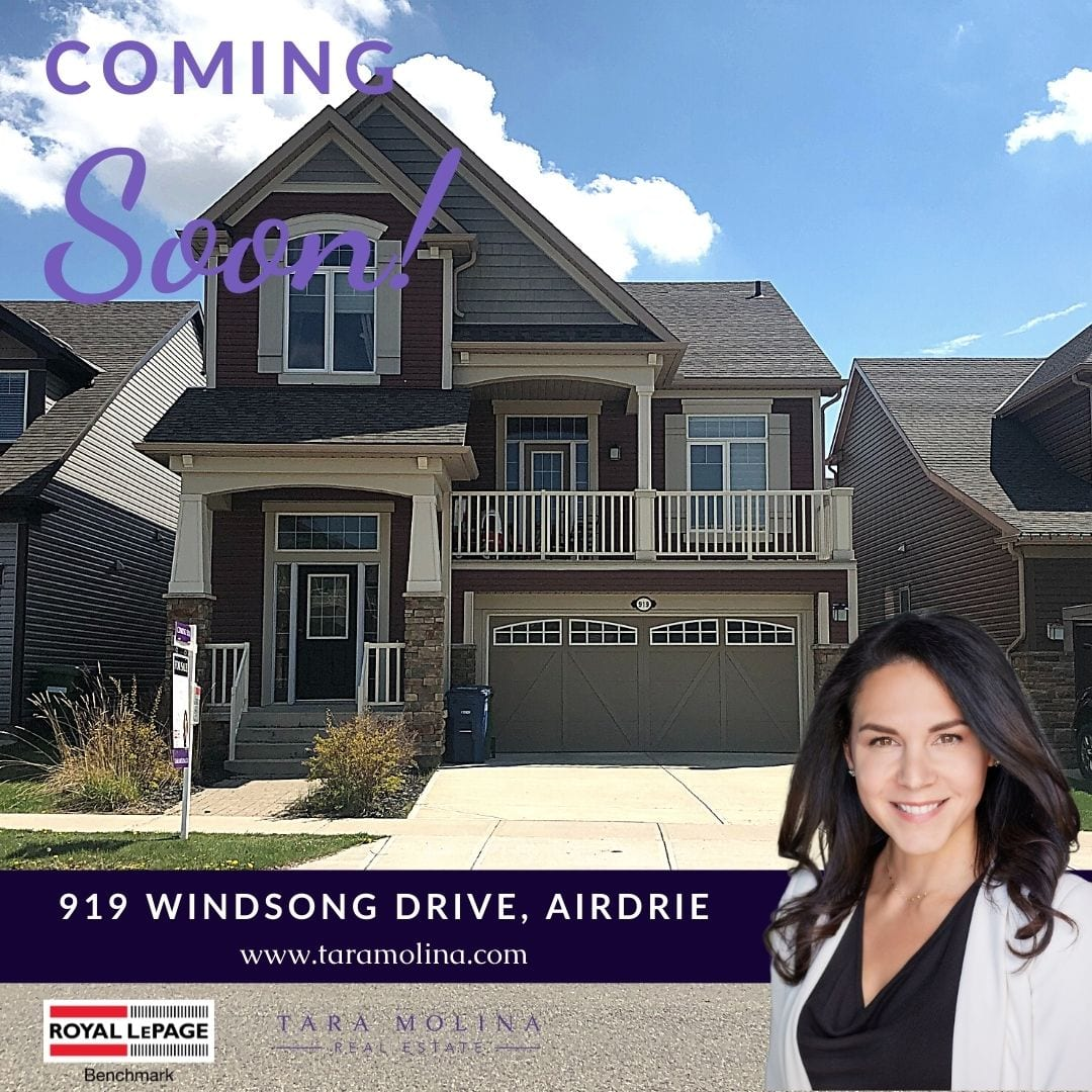 919 Windsong drive